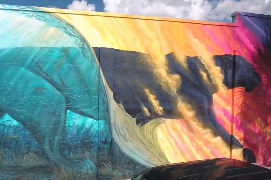 Tight Line Productions Releases Time Lapse Video of Downtown Melbourne Mural